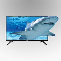 Next - YE-50020-4K 50 İnç TV
